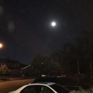 img_0346-moon